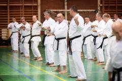 Shito Ryu Karate - Yoshiharu Hatano - Eger - 2016 -14