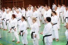 Shito Ryu Karate - Yoshiharu Hatano - Eger - 2016 -15