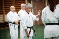 Shito Ryu Karate - Yoshiharu Hatano - Eger - 2016 -11