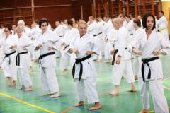 Shito Ryu Karate - Yoshiharu Hatano - Eger - 2016 -12