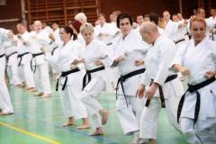 Shito Ryu Karate - Yoshiharu Hatano - Eger - 2016 -13
